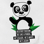 Destroy Racism - VISUAL STATEMENTS