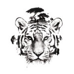 The White Tiger - Robert Farkas