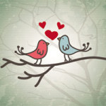 Birdy Love - DeinDesign