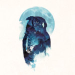 Night Owl - Robert Farkas